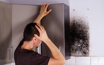 Neem controle over schimmel- en vochtproblemen in huis